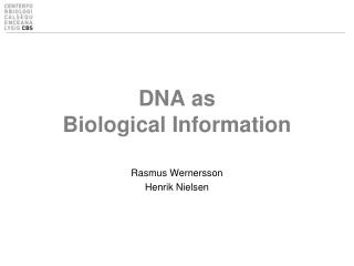 DNA as  Biological Information