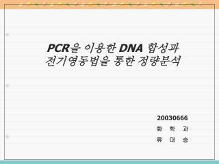 PCR 을 이용한  DNA  합성과 전기영동법을 통한 정량분석