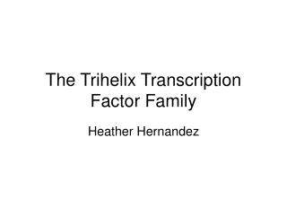 The Trihelix Transcription Factor Family