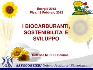 Energia 2012 Pisa, 18 Febbraio 2012