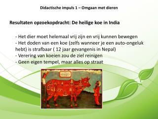 Resultaten opzoekopdracht: De heilige koe in India