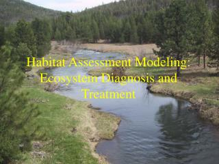 Habitat Assessment Modeling: Ecosystem Diagnosis and Treatment