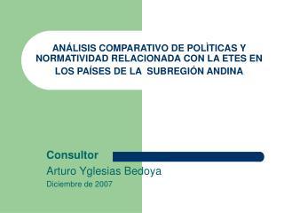 Consultor Arturo Yglesias Bedoya Diciembre de 2007