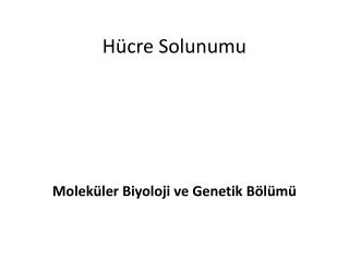 H�cre Solunumu