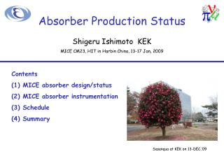 Absorber Production Status