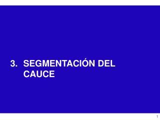 SEGMENTACIÓN DEL CAUCE