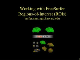 Working with FreeSurfer  Regions-of-Interest (ROIs) surfer.nmr.mgh.harvard