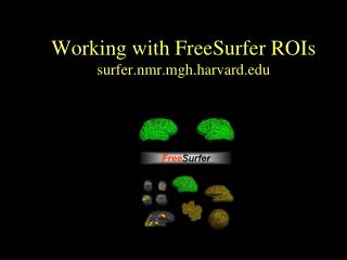 Working with FreeSurfer ROIs surfer.nmr.mgh.harvard