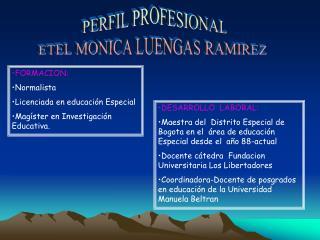 PERFIL PROFESIONAL ETEL MONICA LUENGAS RAMIREZ