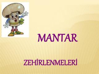 MANTAR ZEHİRLENMELERİ