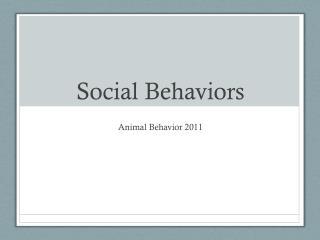 Social Behaviors