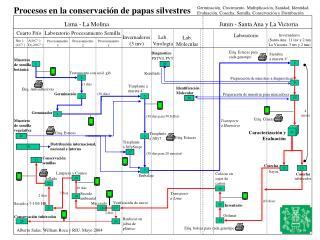 Procesos en la conservación de  papa s  silvestre s