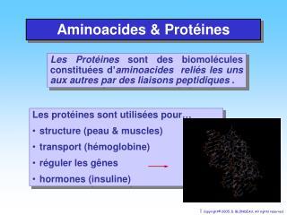 Aminoacides & Protéines