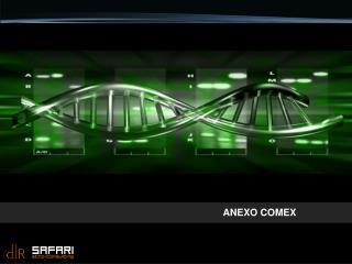 ANEXO COMEX