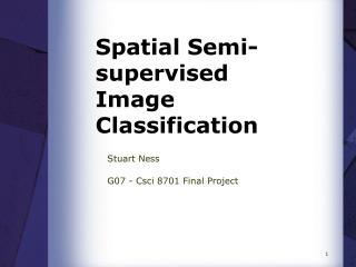 Spatial Semi-supervised Image Classification