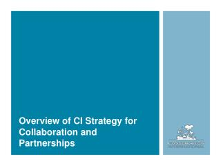 Overview of CI Strategy for Collaboration and Partnerships