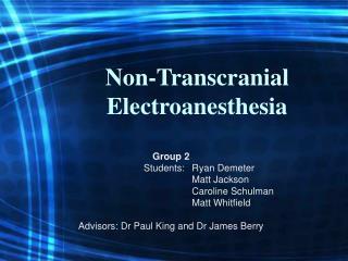 Non-Transcranial Electroanesthesia