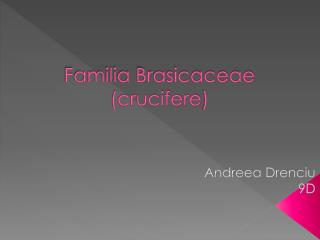 Familia Brasicaceae  ( crucifere )