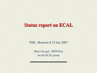 Status report on ECAL