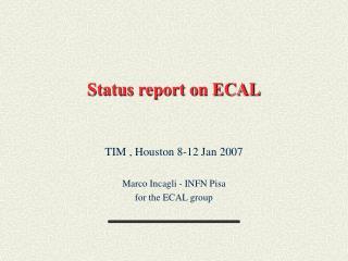 Status report on ECAL