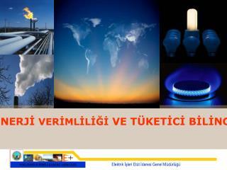 Elektrik İşleri Etüt İdaresi Genel Müdürlüğü