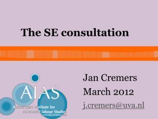 The SE consultation