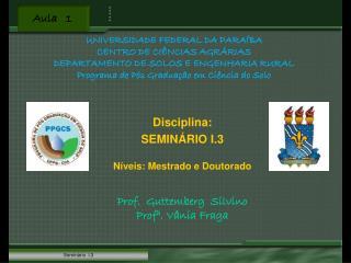 Disciplina: SEMINÁRIO I.3 Níveis: Mestrado e Doutorado Prof.  Guttemberg  Silvino