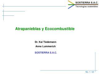 Atrapanieblas y Ecocombustible