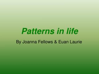 Patterns in life
