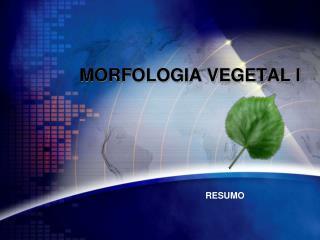 MORFOLOGIA VEGETAL I