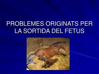 PROBLEMES ORIGINATS PER LA SORTIDA DEL FETUS