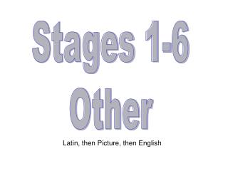 Stages 1-6 Other