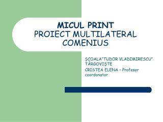 MICUL PRINT PROIECT MULTILATERAL COMENIUS