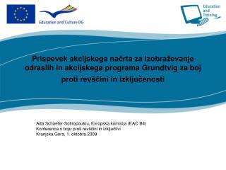 Ada Schaefer-Sotiropoulou, Evropska komisija (EAC B4)