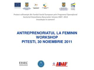 Antreprenoriatul  la  feminin Workshop Pitesti, 30  noiembrie  2011