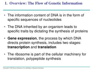 1.  Overview: The Flow of Genetic Information