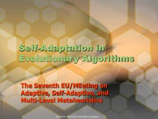 Self-Adaptation in Evolutionary Algorithms