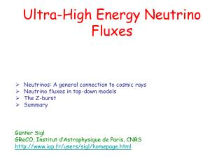 Ultra-High Energy Neutrino Fluxes