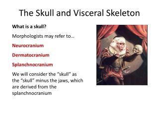 The Skull and Visceral Skeleton