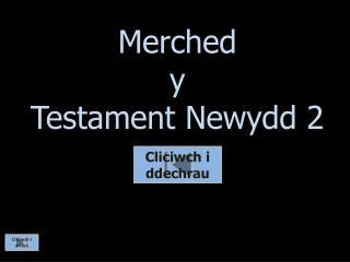 Merched y  Testament  Newydd  2