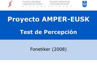 Proyecto AMPER-EUSK Test de Percepción