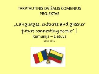 Rumunija – Lietuva 2013-2015