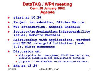 DataTAG / WP4 meeting Cern, 29 January 2002 Agenda