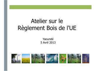 Atelier sur le  Règlement Bois de l'UE
