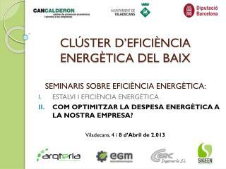 CLÚSTER D'EFICIÈNCIA ENERGÈTICA DEL BAIX