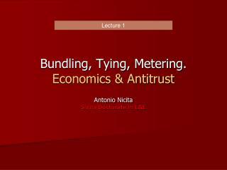 Bundling, Tying, Metering. Economics & Antitrust