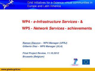 WP4 -  e-Infrastructure Services  - &   WP5 -  Network Services  - achievements