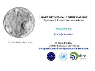 IVF Maribor Lacerta  D54 °  18'59.66''