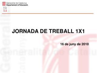 JORNADA DE TREBALL 1X1 16 de juny de 2010
