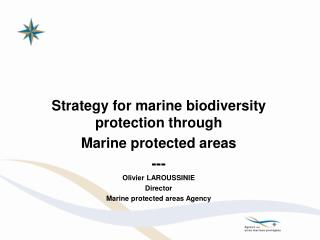 Strategy for marine biodiversity protection through Marine protected areas --- Olivier LAROUSSINIE